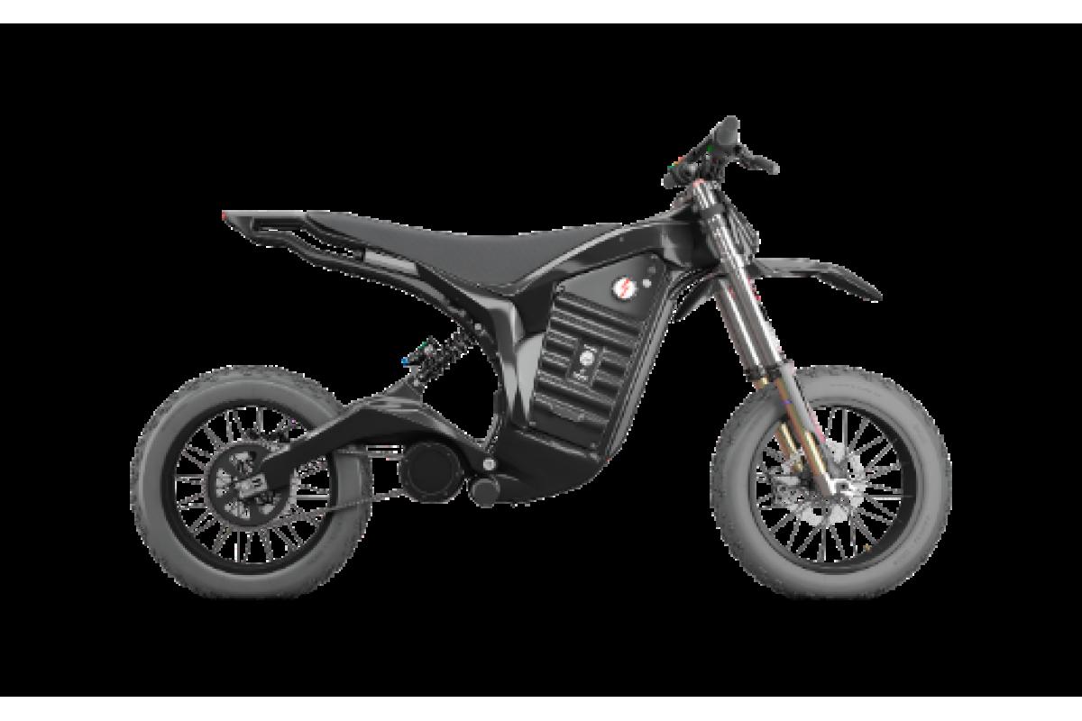 DENZEL Carbon Electric Bike SAMURAI