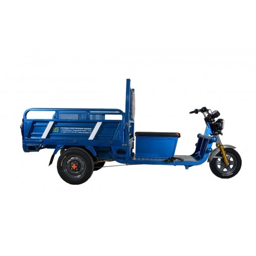 Двухместный электротрицикл (ГЭТ-1000.1200.45)
