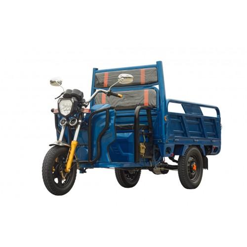 Грузовой электротрицикл (ГЭТ- 1000.1200.32)